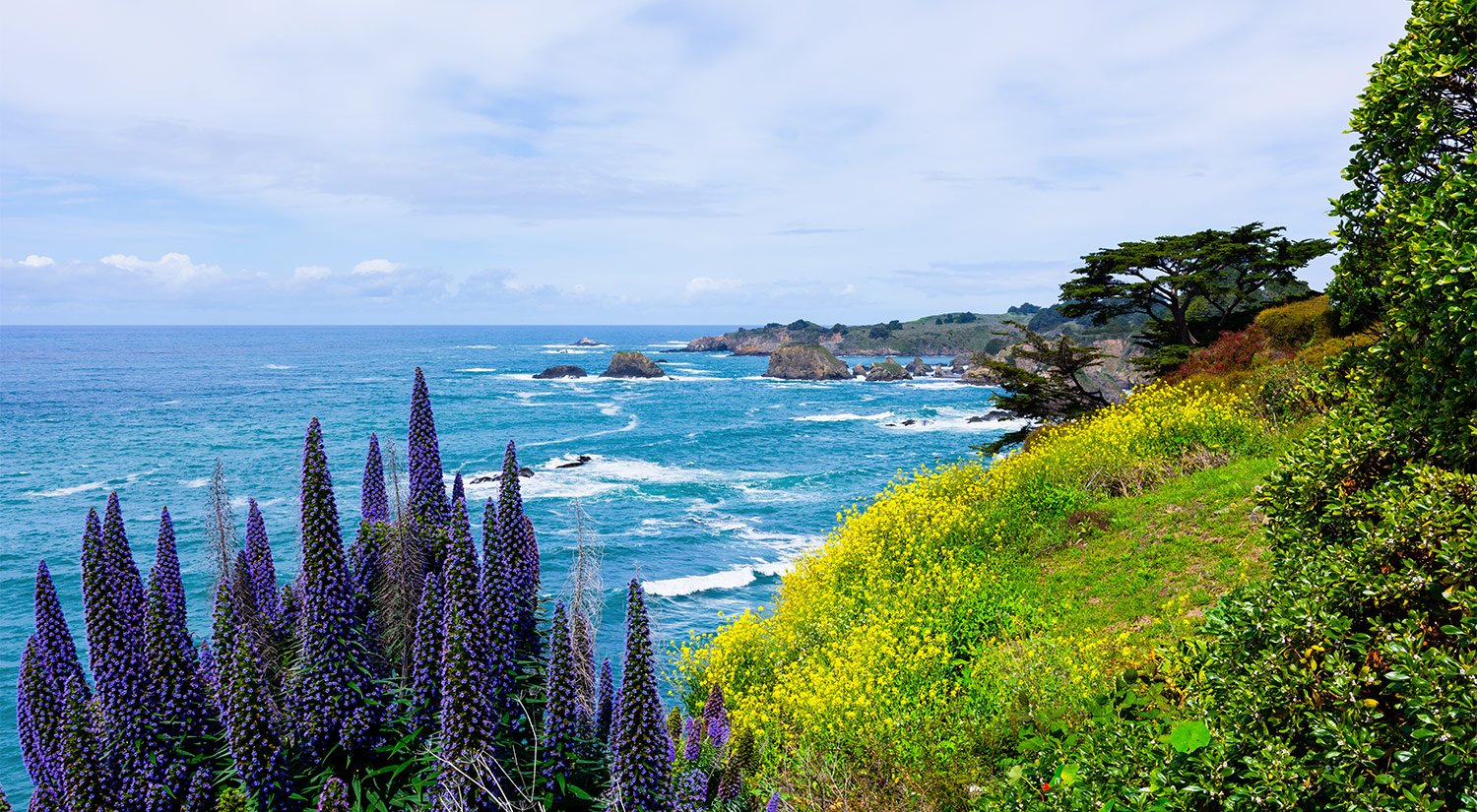 Located on the north coast of the pch in historic mendocino