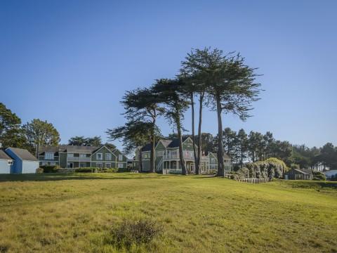 Hill House Inn - Towering Trees